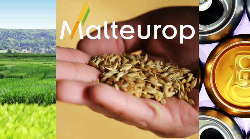 malteurope, солод пивоваренный, Украина, производители