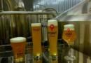 Международный янтарный лагер сварят пивовары из разных стран и регионов на коллаборации в Ale Point