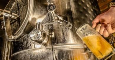 статистика, обсяг виробництва, пиво, солод, Україна