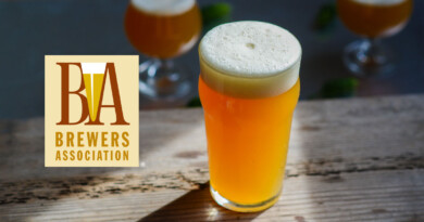 Brewers Association, 2020 Beer Style Guidelines, новое руководство по стилям, новые стили пива