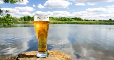 эко-пиво, забота об экологии, эко-пивоварня